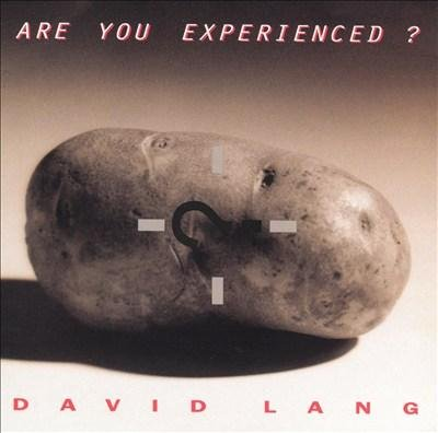 David Lang - Are You Experienced