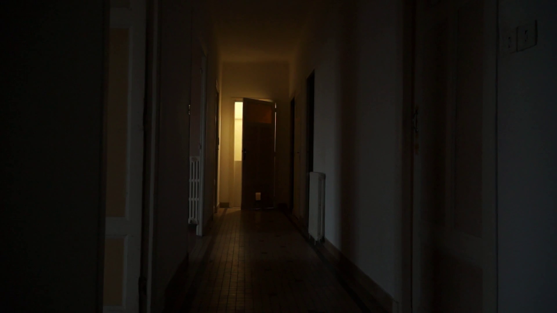 Videoblocks-still-shot-on-dark-creepy-hallway-light-switches-on-door-slowly-opens-light-suddenly-off-old-apartment_b-8wg-wsl_thumbnail-full10