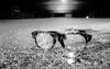 Broken_glasses